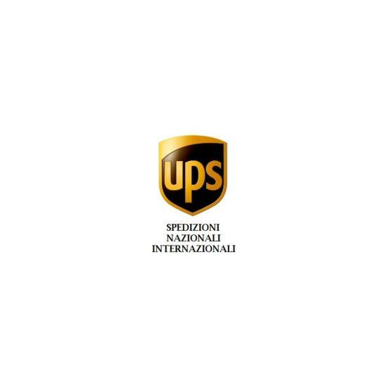 Spedizione UPS